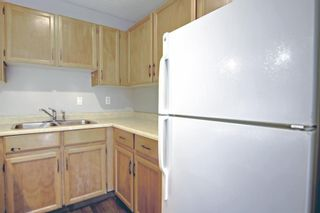 Photo 13: 24 420 Grier Avenue NE in Calgary: Greenview Row/Townhouse for sale : MLS®# A1154049