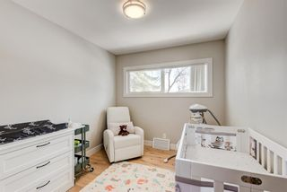 Photo 14: 359 Ashley Crescent SE in Calgary: Acadia Detached for sale : MLS®# A1115281