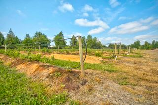 Photo 12: 3155 BRADNER Road in Abbotsford: Aberdeen Agri-Business for sale : MLS®# C8039365