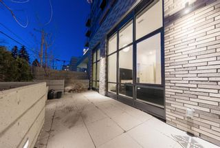 Photo 44: 101 301 10 Street NW in Calgary: Hillhurst Apartment for sale : MLS®# A1124211