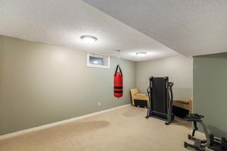 Photo 16: 804 RUNDLECAIRN Way NE in Calgary: Rundle Detached for sale : MLS®# A1124581