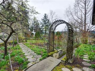 Photo 4: 7005 Brentwood Dr in BRENTWOOD BAY: CS Brentwood Bay House for sale (Central Saanich)  : MLS®# 724277
