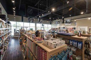 Photo 5: 4424 17 Street in Edmonton: Zone 30 Business for sale : MLS®# E4204352