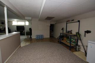Photo 22: 40 APPLEWOOD Drive SE in Calgary: Applewood Park Detached for sale : MLS®# A1019291