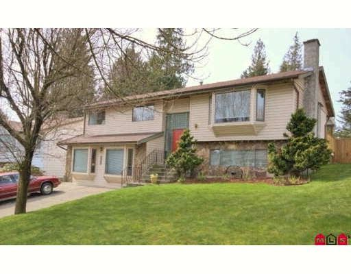 Main Photo: 5807 170A Street in Surrey: Cloverdale BC House for sale (Cloverdale)  : MLS®# F2906773