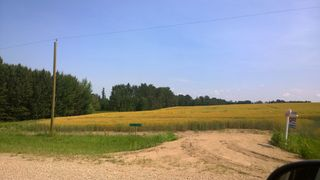 Photo 1: 51425 RGE RD 280: Rural Parkland County Rural Land/Vacant Lot for sale : MLS®# E4230243
