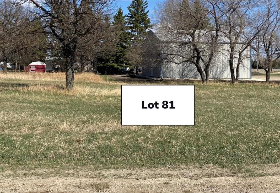 Main Photo: 81 Spruce Street in Killarney: Vacant Land for sale : MLS®# 202110772