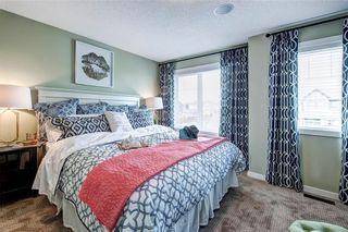 Photo 16: 216 Red Embers Way NE in Calgary: Redstone House for sale : MLS®# C4124469