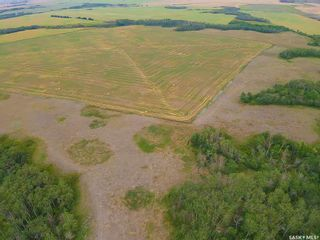 Photo 13: Rm Indian Head 160.39 acres in Indian Head: Farm for sale (Indian Head Rm No. 156)  : MLS®# SK867616