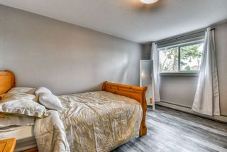 """Photo 13: 29340 GALAHAD Crescent in Abbotsford: Bradner House for sale in """"Bradner"""" : MLS®# R2269124"""