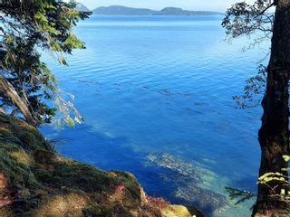 Photo 8: 9844 Canal Rd in : GI Pender Island House for sale (Gulf Islands)  : MLS®# 884964