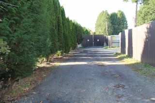 Photo 5: 5317 264 Street in Langley: Aldergrove Langley House for sale : MLS®# R2515646