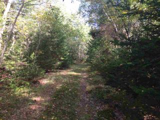 Photo 3: Lot Central Port Mouton in Central Port Mouton: 406-Queens County Vacant Land for sale (South Shore)  : MLS®# 201925220