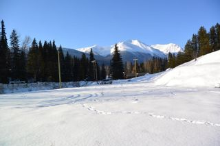Photo 9: LOT A W 16 Highway in Smithers: Smithers - Town Land for sale (Smithers And Area (Zone 54))  : MLS®# R2533470