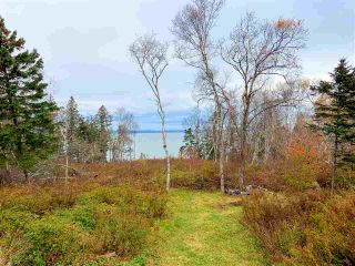 Photo 24: 273 OLD BAXTER MILL Road in Baxters Harbour: 404-Kings County Residential for sale (Annapolis Valley)  : MLS®# 202101341
