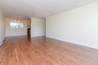 Photo 10: 304 1680 Poplar Ave in : SE Mt Tolmie Condo for sale (Saanich East)  : MLS®# 873736