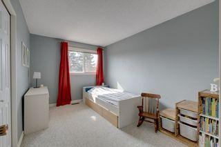 Photo 11: 48 GROVELAND Road: Sherwood Park House for sale : MLS®# E4229448