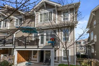 """Photo 30: 46 7059 210 Street in Langley: Willoughby Heights Townhouse for sale in """"Alder at Milner Heights"""" : MLS®# R2555751"""
