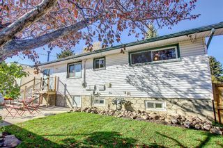 Photo 41: 9804 Alcott Road SE in Calgary: Acadia Detached for sale : MLS®# A1153501