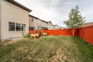 Photo 14: 2927 26 Ave NW in Edmonton: House for sale