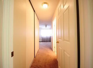 Photo 13: 404 4514 54 Avenue: Olds Apartment for sale : MLS®# A1130006