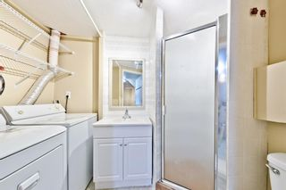 Photo 23: 152 Martinview Close NE in Calgary: Martindale Detached for sale : MLS®# A1153195