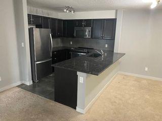 Photo 4: 1217 6118 80 Avenue NE in Calgary: Saddle Ridge Apartment for sale : MLS®# A1131832