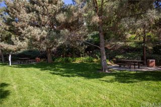 Photo 22: 19663 Orviento Drive in Lake Forest: Residential for sale (PH - Portola Hills)  : MLS®# OC20224034