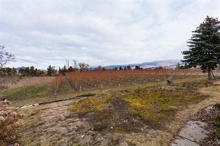 Photo 21: 245 Cornish Road, in Kelowna: Agriculture for sale : MLS®# 10235331