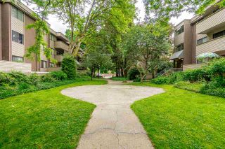 Photo 21: 22 2433 KELLY Avenue in Port Coquitlam: Central Pt Coquitlam Condo for sale : MLS®# R2461965