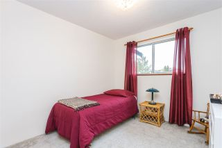 "Photo 26: 9439 214 Street in Langley: Walnut Grove House for sale in ""Walnut Grove"" : MLS®# R2548542"