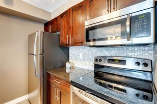 Photo 15: 4207 1317 27 Street SE in Calgary: Albert Park/Radisson Heights Apartment for sale : MLS®# A1126561