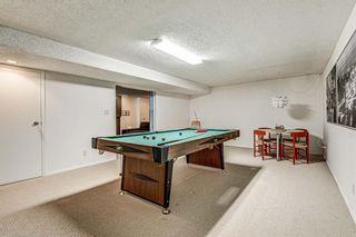 Photo 41: 751 PARKWOOD Way SE in Calgary: Parkland Detached for sale : MLS®# A1020038