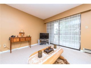 Photo 19: 235 2279 MCCALLUM Road in Abbotsford: Central Abbotsford Condo for sale : MLS®# F1432567