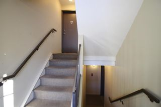 Photo 7: 101,102, 201 ,202,301,302 130 12 Avenue in Calgary: Crescent Heights Apartment for sale : MLS®# A1114719