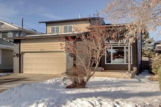 Photo 46: 123 DEERMOSS Crescent SE in Calgary: Deer Run Detached for sale : MLS®# C4287185