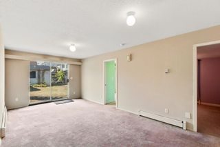 Photo 19: 6725 SALISBURY Avenue in Burnaby: Highgate House for sale (Burnaby South)  : MLS®# R2621419