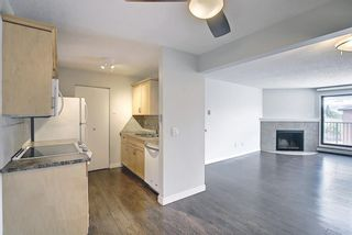 Photo 12: 4302 13045 6 Street SW in Calgary: Canyon Meadows Apartment for sale : MLS®# A1116316