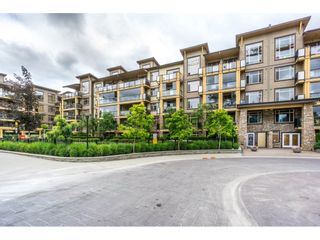 "Main Photo: 165 8258 207A Street in Langley: Willoughby Heights Condo for sale in ""Yorkson Creek"" : MLS(r) # R2182483"