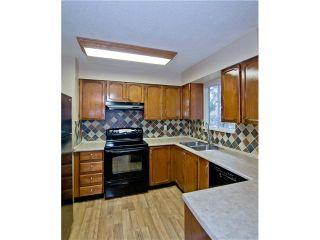 Photo 3: 11783 STEEVES ST in Maple Ridge: Southwest Maple Ridge House for sale : MLS®# V1052676