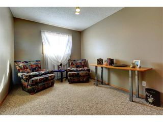 Photo 16: 48 RIVERVIEW Close SE in Calgary: Riverbend House for sale : MLS®# C4019048
