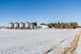 Photo 46: 57228 RGE RD 251: Rural Sturgeon County House for sale : MLS®# E4225650