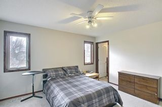 Photo 14: 279 Coral Springs Circle NE in Calgary: Coral Springs Detached for sale : MLS®# A1083552