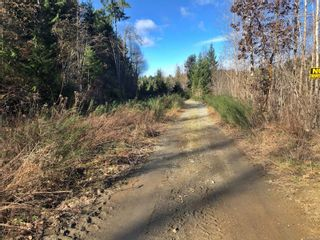 Photo 16: 0 Riverbend Rd in : Na Extension Unimproved Land for sale (Nanaimo)  : MLS®# 868867