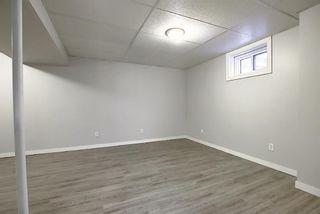 Photo 18: 3210 30A Avenue SE in Calgary: Dover Semi Detached for sale : MLS®# A1055012