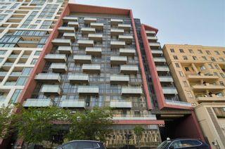 Photo 20: 313 560 W Front Street in Toronto: Waterfront Communities C1 Condo for sale (Toronto C01)  : MLS®# C4482108