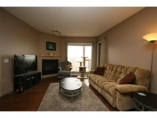 Photo 12: 223 69 SPRINGBOROUGH Court SW in Calgary: Springbank Hill Condo for sale : MLS®# C4002803