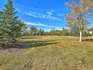 Photo 26: 1414 2 Street NW in Calgary: Crescent Heights Detached for sale : MLS®# A1129267