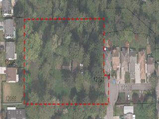 Photo 2: 12101 208th Street in Maple Ridge: Northwest Maple Ridge House for sale : MLS®# v1137650
