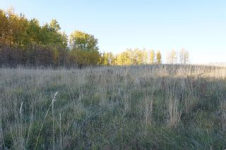 Photo 8: 31 53214 RR13: Rural Parkland County Rural Land/Vacant Lot for sale : MLS®# E4266458
